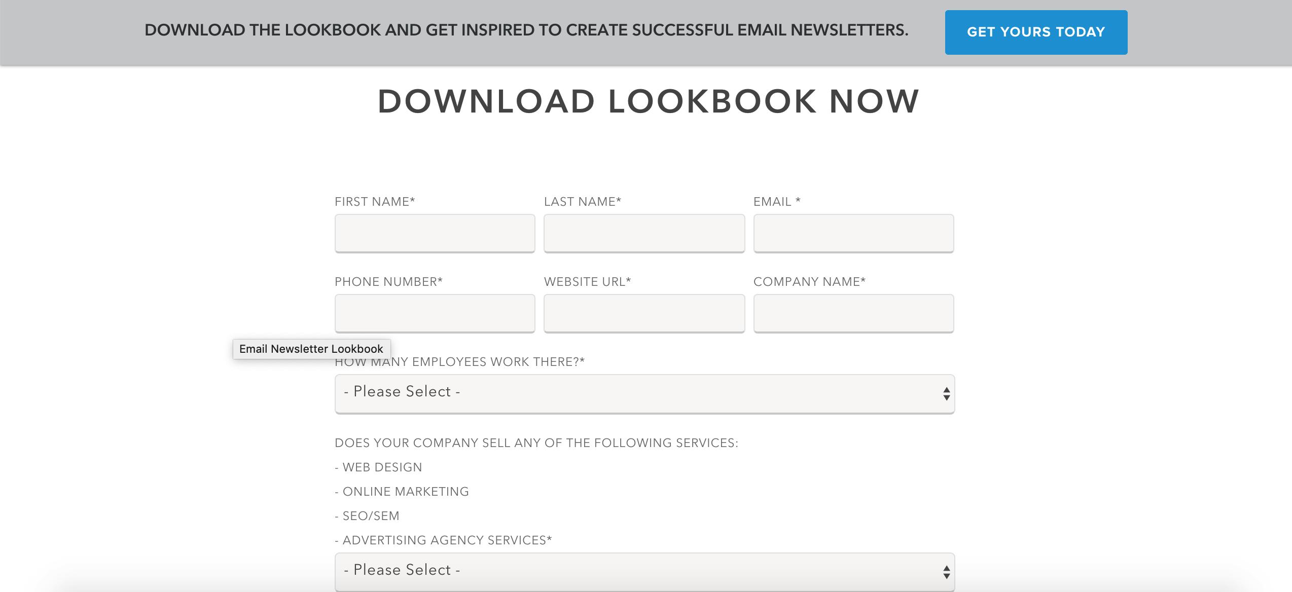 ways to grow B2B email marketing lists - whitepaper